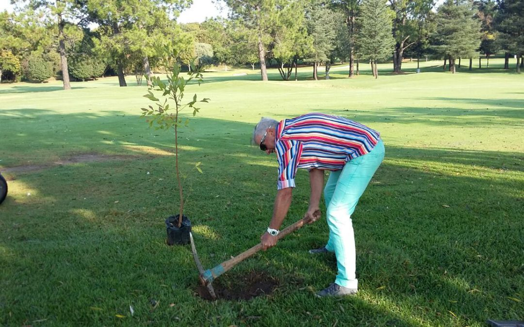 Randpark's Contribution towards Improving our Environment