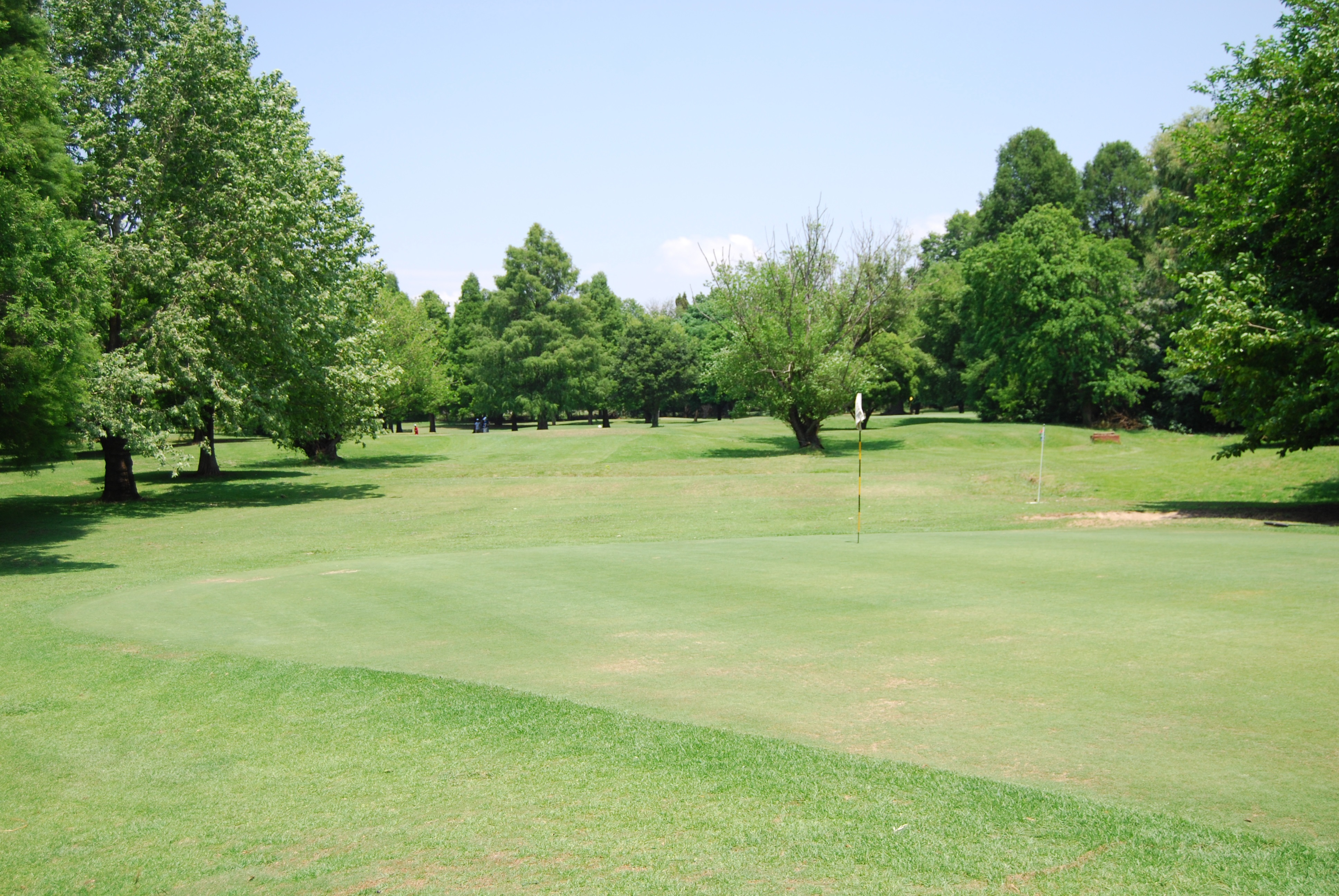 A small golfing gem in the heart of Joburg
