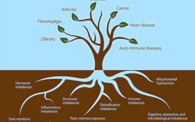 Functional Health Therapy – Managing the root causes of your illness
