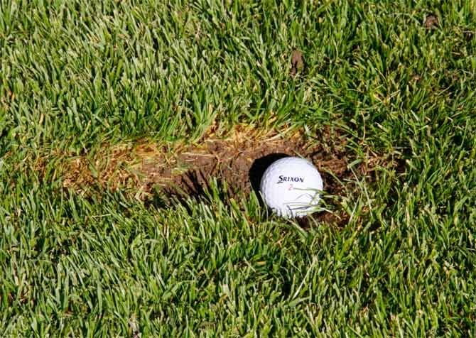 Fix those divots, repair those pitch marks, drive your cart responsibly! Let's take care of Randpark